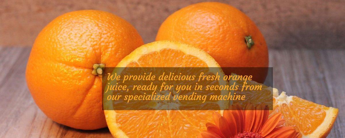Creare web site pentru aparate suc de portocale, Refresh Corner 3