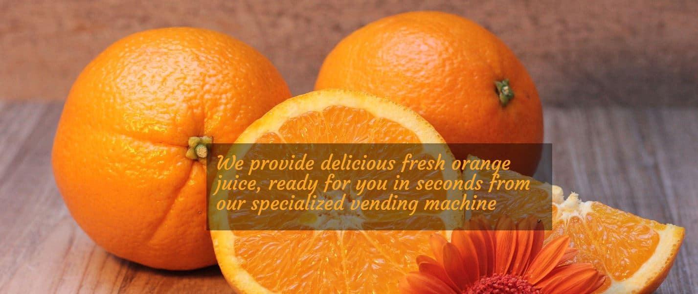 Creare web site pentru aparate suc de portocale, Refresh Corner 12