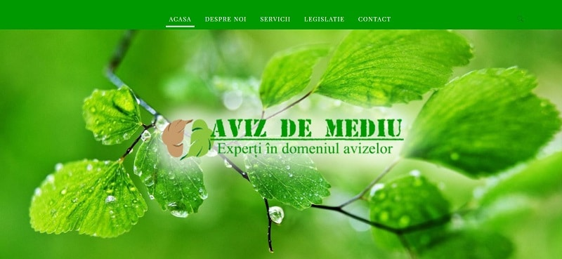 Creare website de prezentare firma aviz de mediu 5