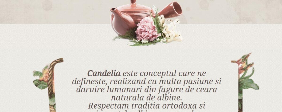 Candelia, Creare website pentru lumanari din ceara naturala 1